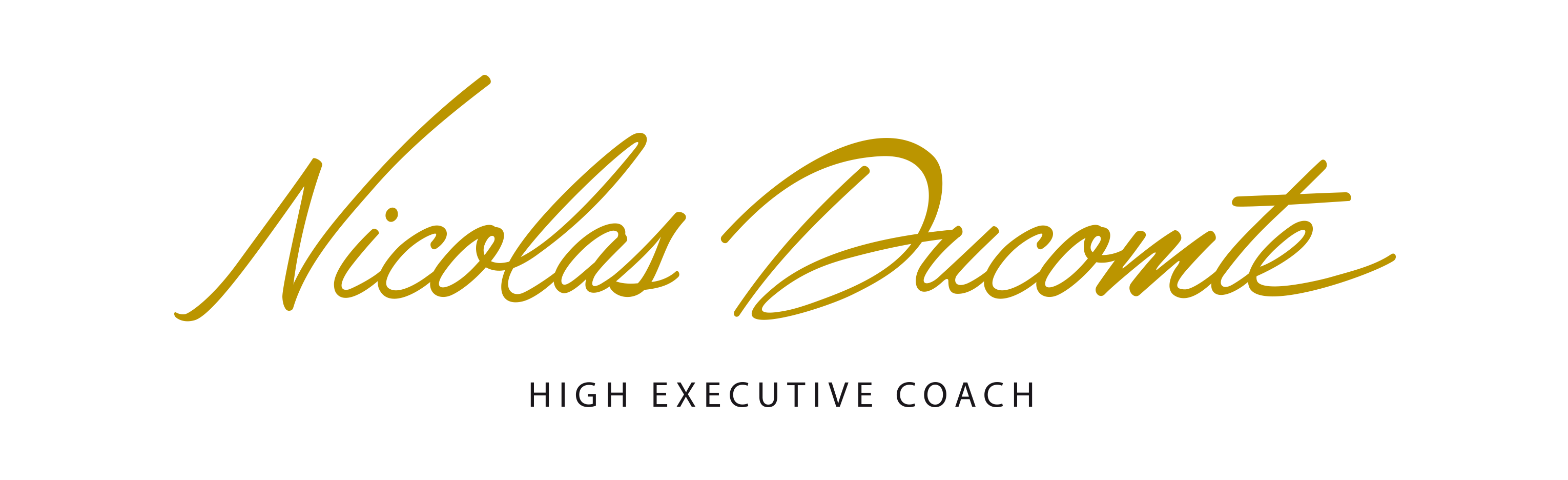 Nicolas DUCOMTE High Executive Coach